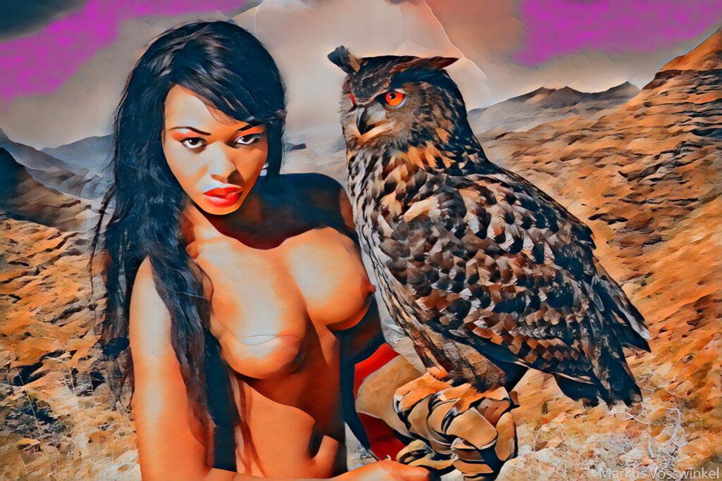 owl pop art